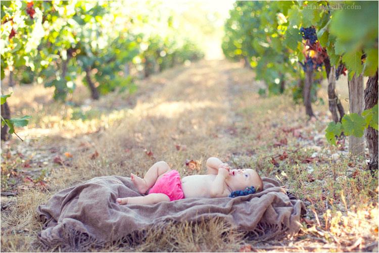 fairydaily seance photo bebe dans les vignes