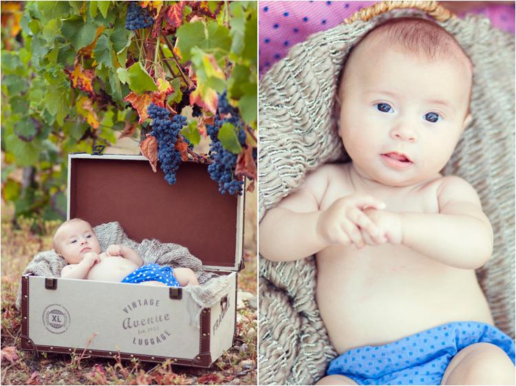 fairydaily seance photo bébé dans les vignes